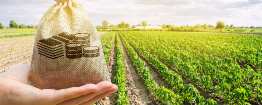 How a $330 Million Agricultural Grant is Impacting the Bag Industry, National Bulk Bag
